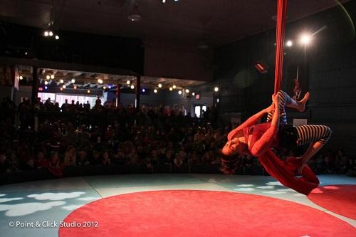 aerial silks, circus arts, Macy's Arts Sampler